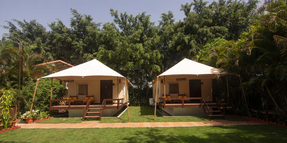 best tents near wai